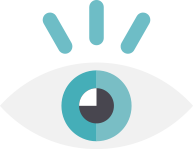 iDigital Solutions Vision